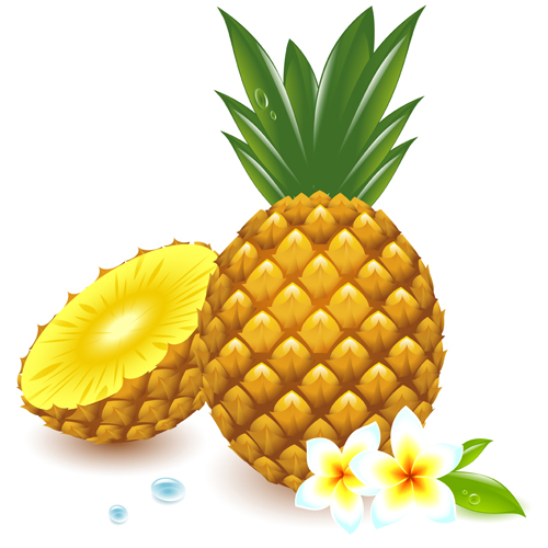 Pineapple vector free download clipart panda free for Free drawing websites no download
