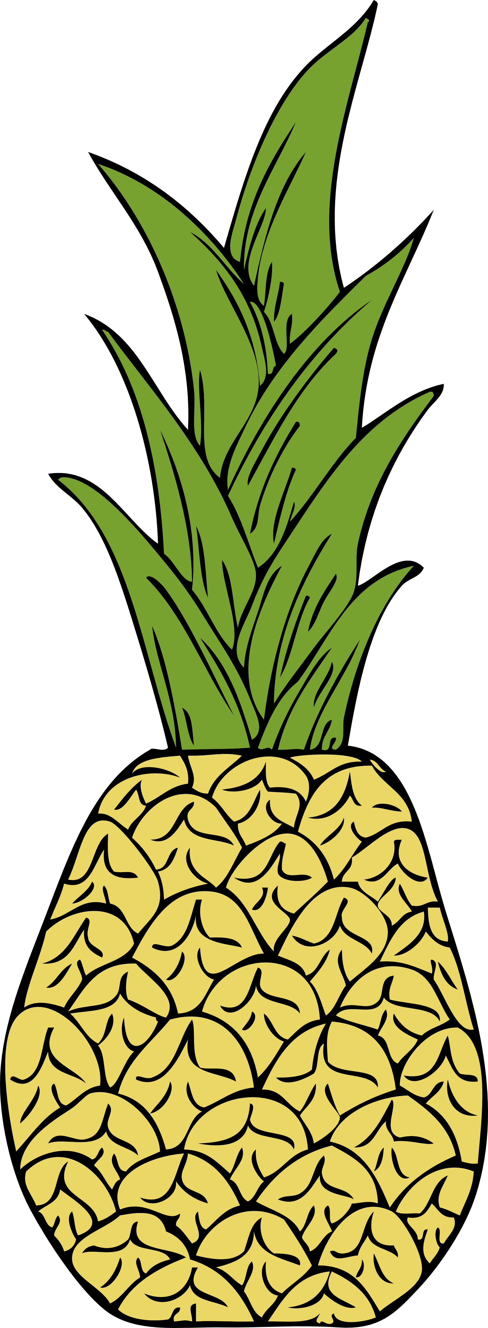 Pineapple Vector Png | Clipart Panda - Free Clipart Images