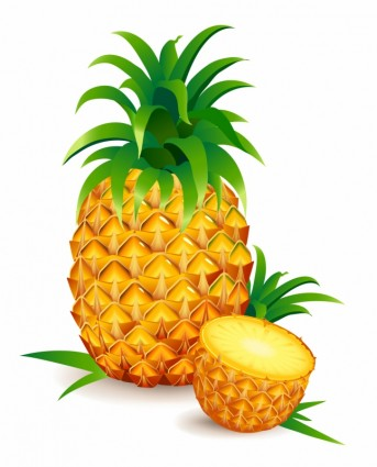 pineapple-wallpaper-patterns-one and a half pineapple 310431 jpgPineapple Logo Vector