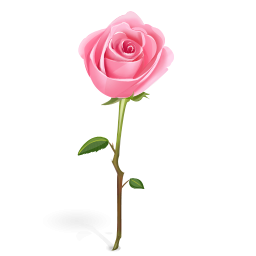 Single Pink Rose Clip Art | Clipart Panda - Free Clipart ...