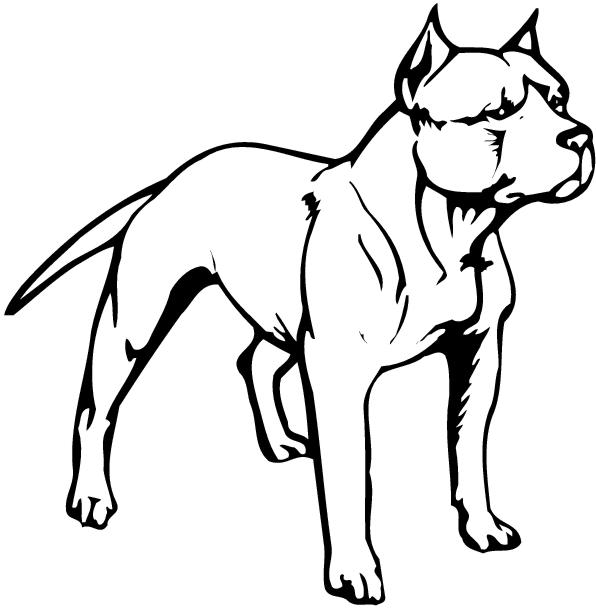 pit bull clip art item 3 clipart panda free clipart images rh clipartpanda com pitbull black and white clipart pitbull black and white clipart