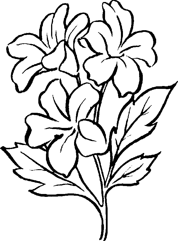 Plants Clipart Black And White | Clipart Panda - Free ...