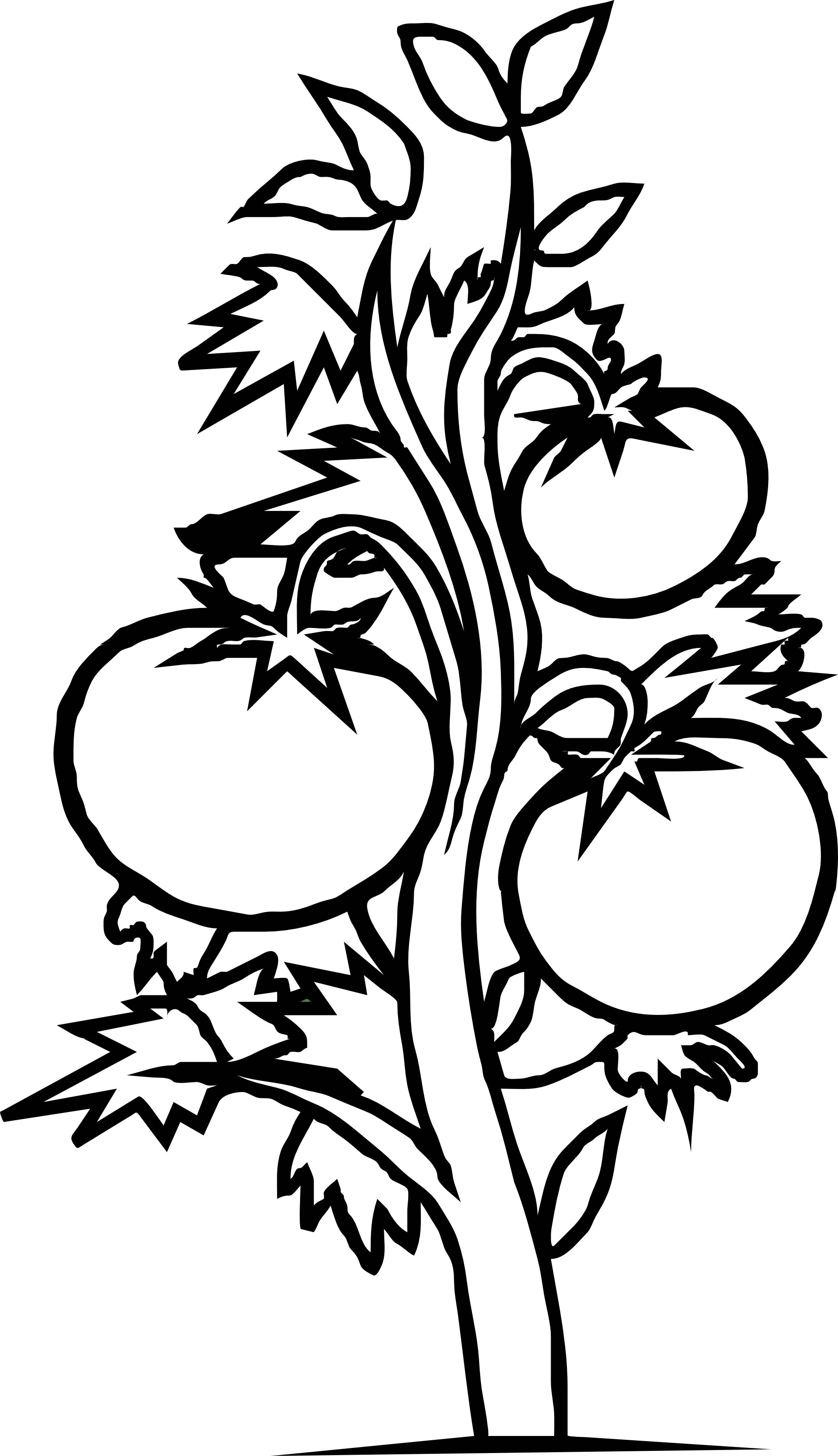 Line Art Vegetables : Vegetable plant clipart black and white panda
