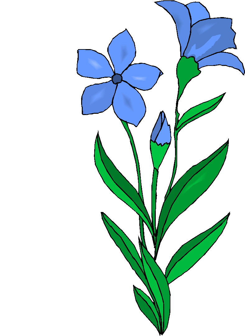 clipart of plants - photo #7