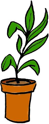 Free Plants Clipart