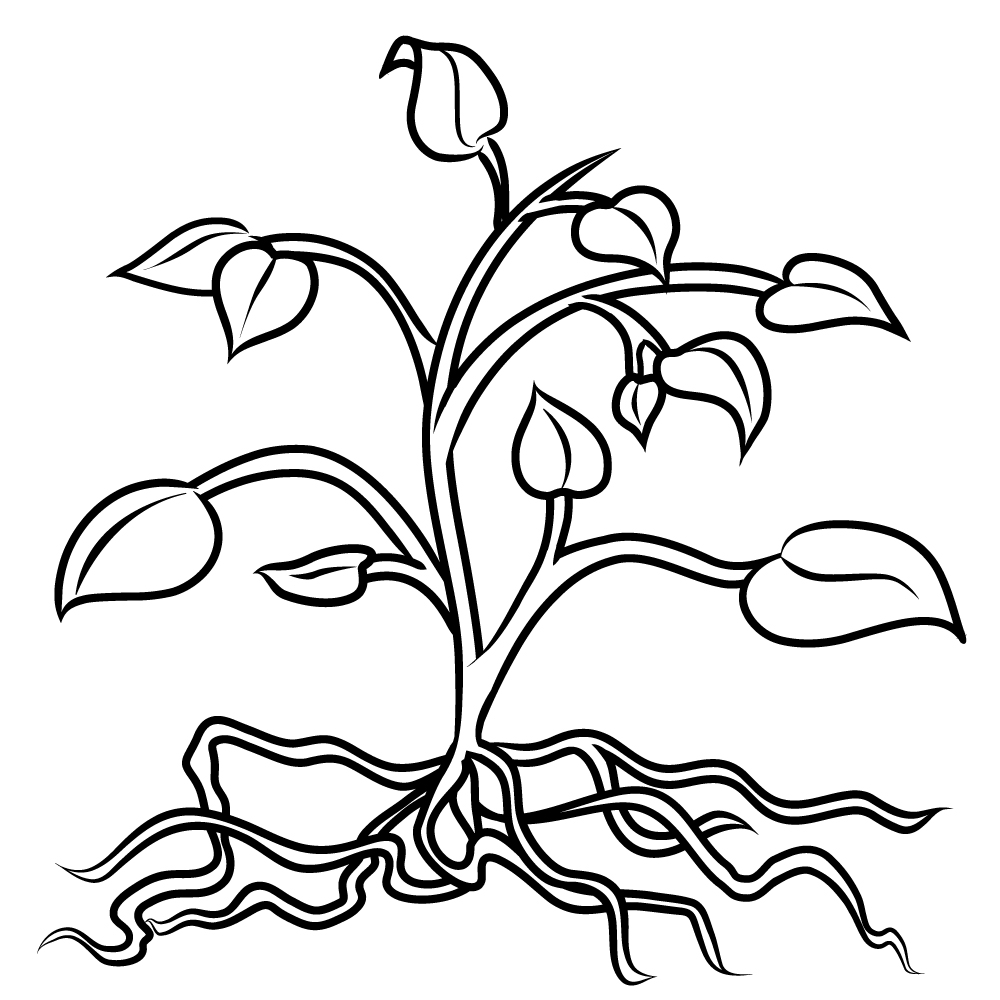 Clip Art Tree With Roots | Clipart Panda - Free Clipart Images