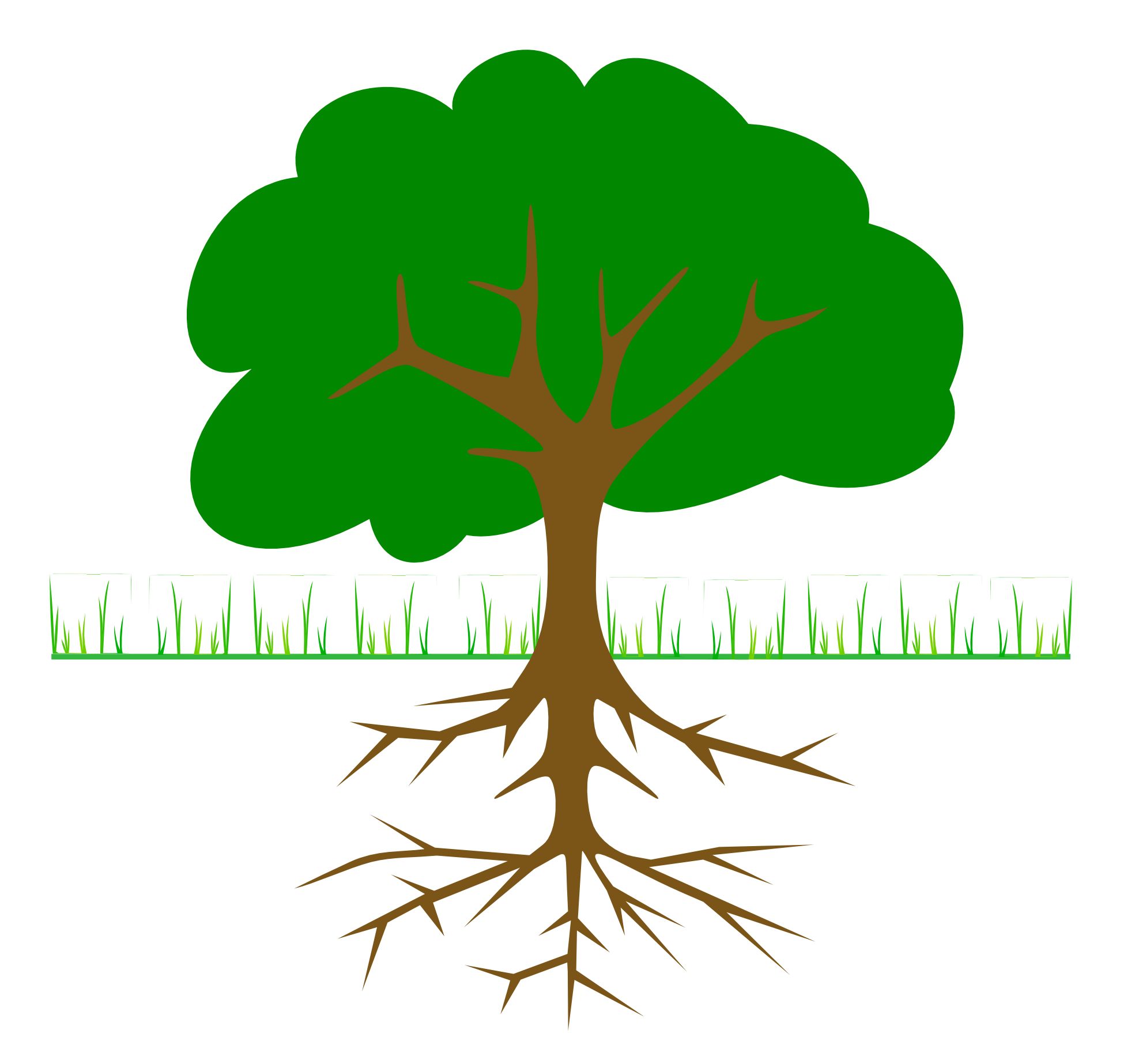 Plant With Roots Clipart | Clipart Panda - Free Clipart Images