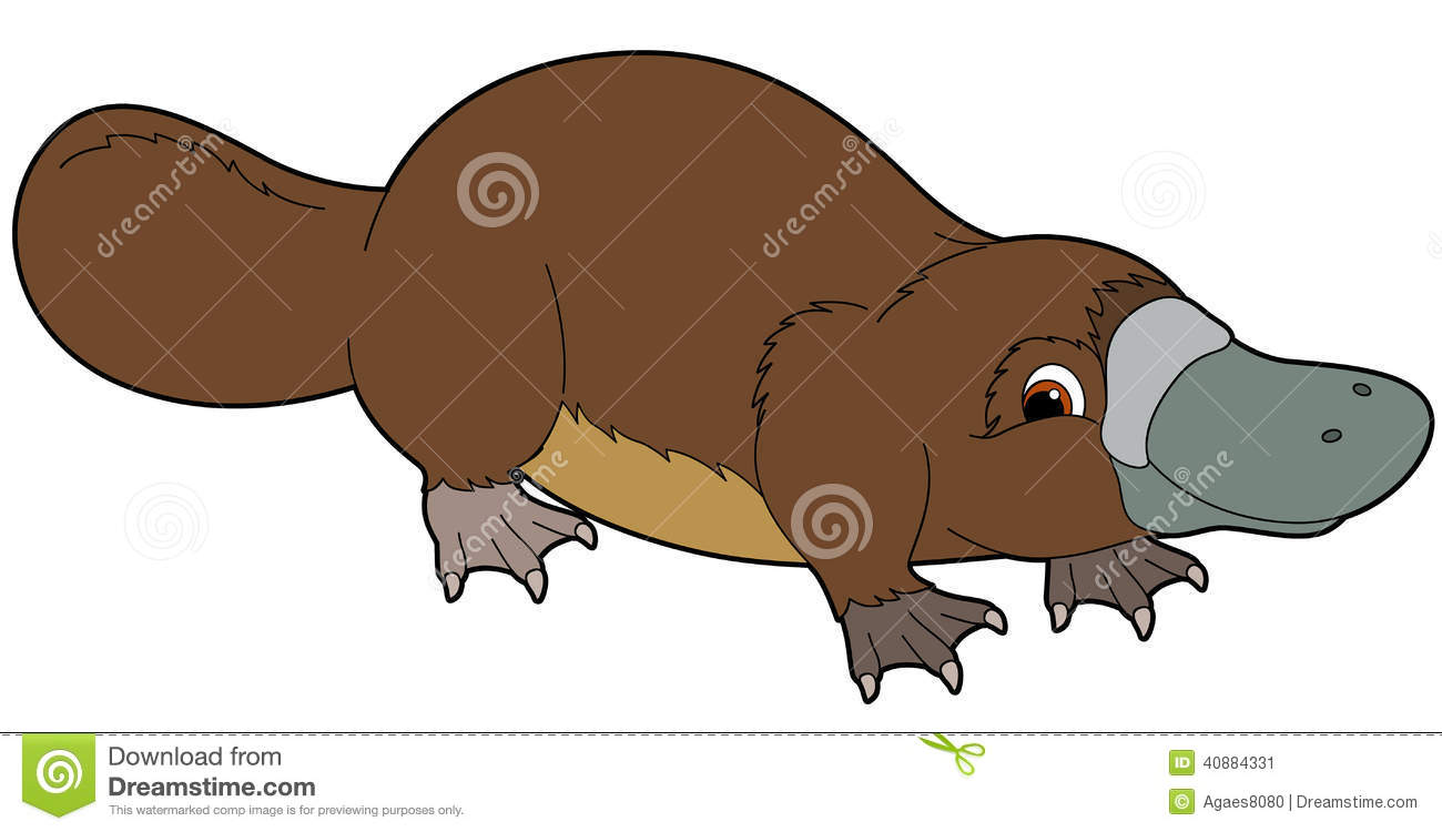 Platypus Clipart | Clipart Panda - Free Clipart Images