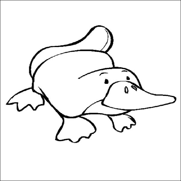 how to use reportlab platypus