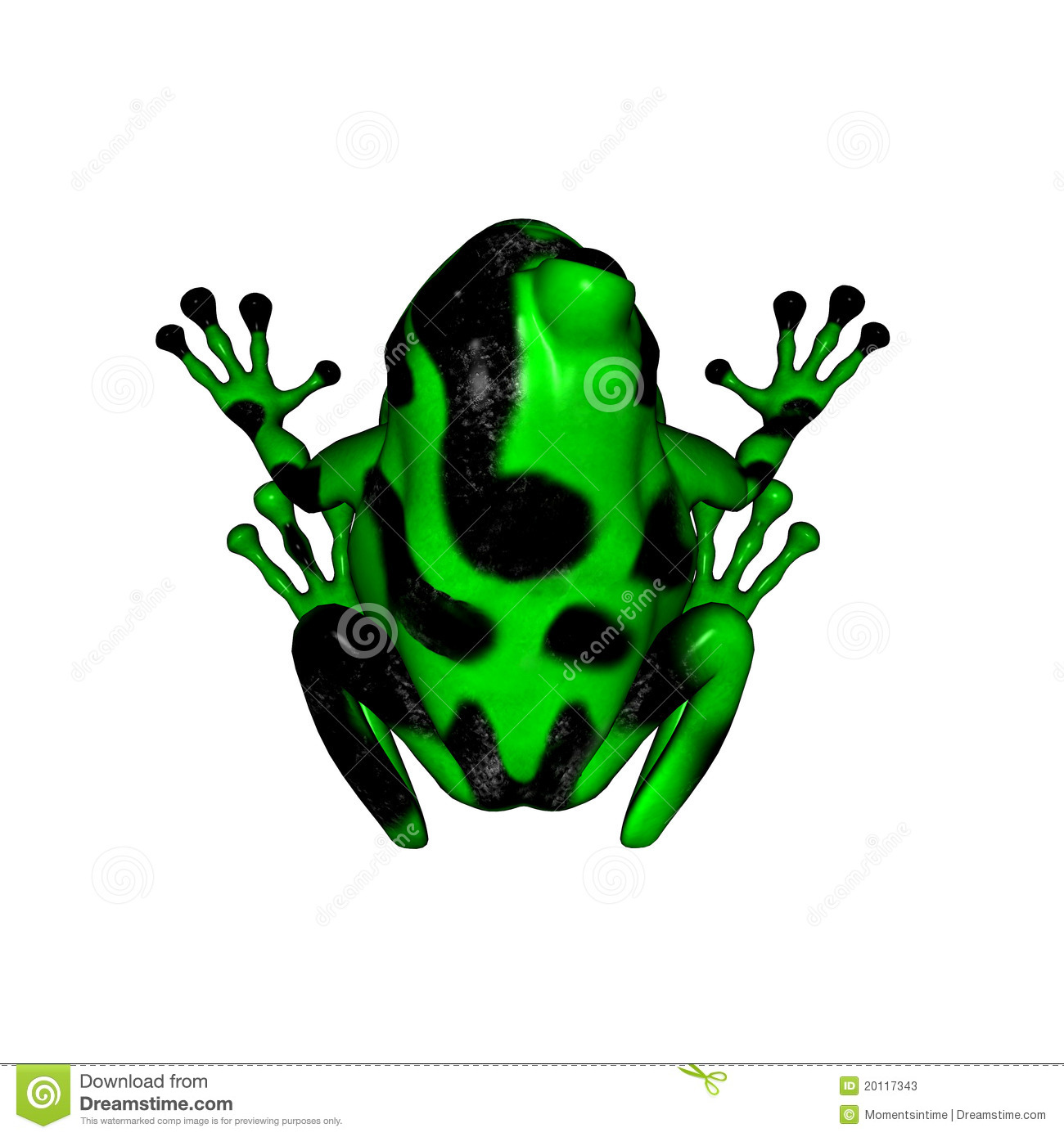 Poison dart frog clip art - photo#3
