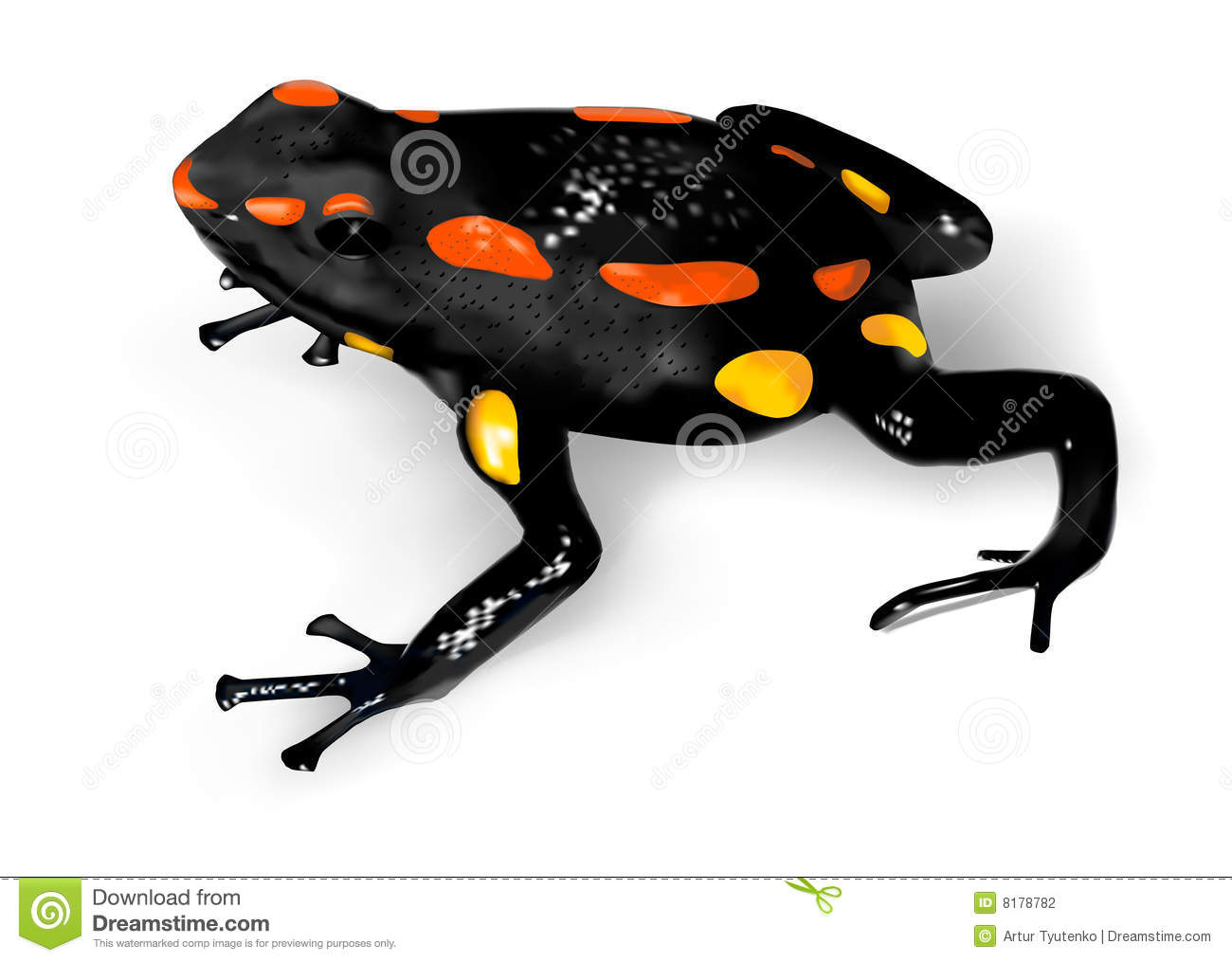 Poison dart frog clip art - photo#8