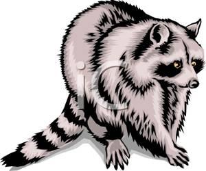 possum clipart clipart panda free clipart images rh clipartpanda com cute possum clipart possum clipart black and white