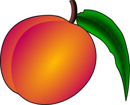 Nectarine Clipart | Clipart Panda - Free Clipart Images