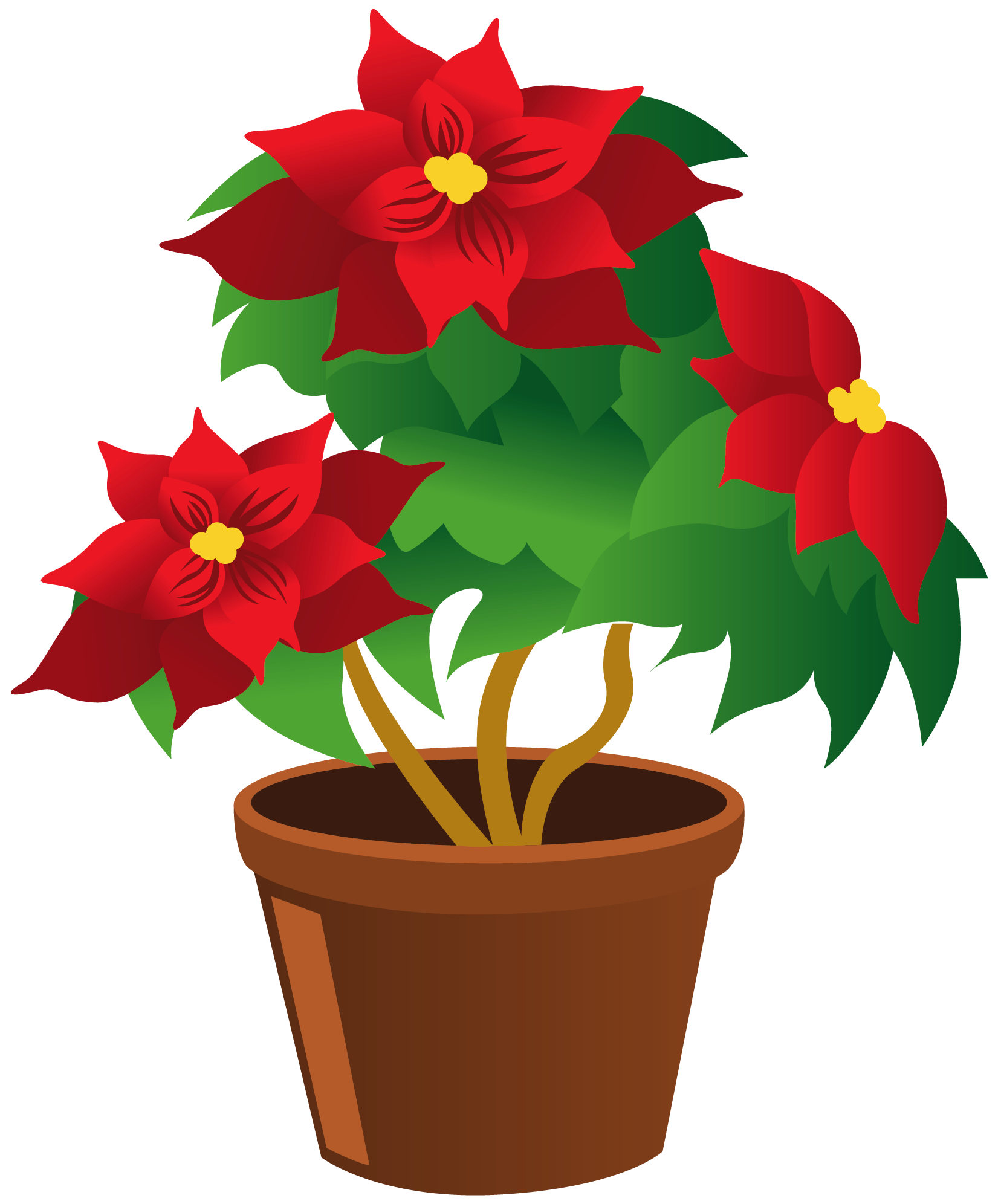 Potted Plant Clipart