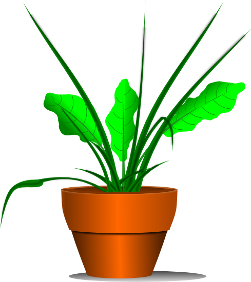 clipart of plants - photo #24