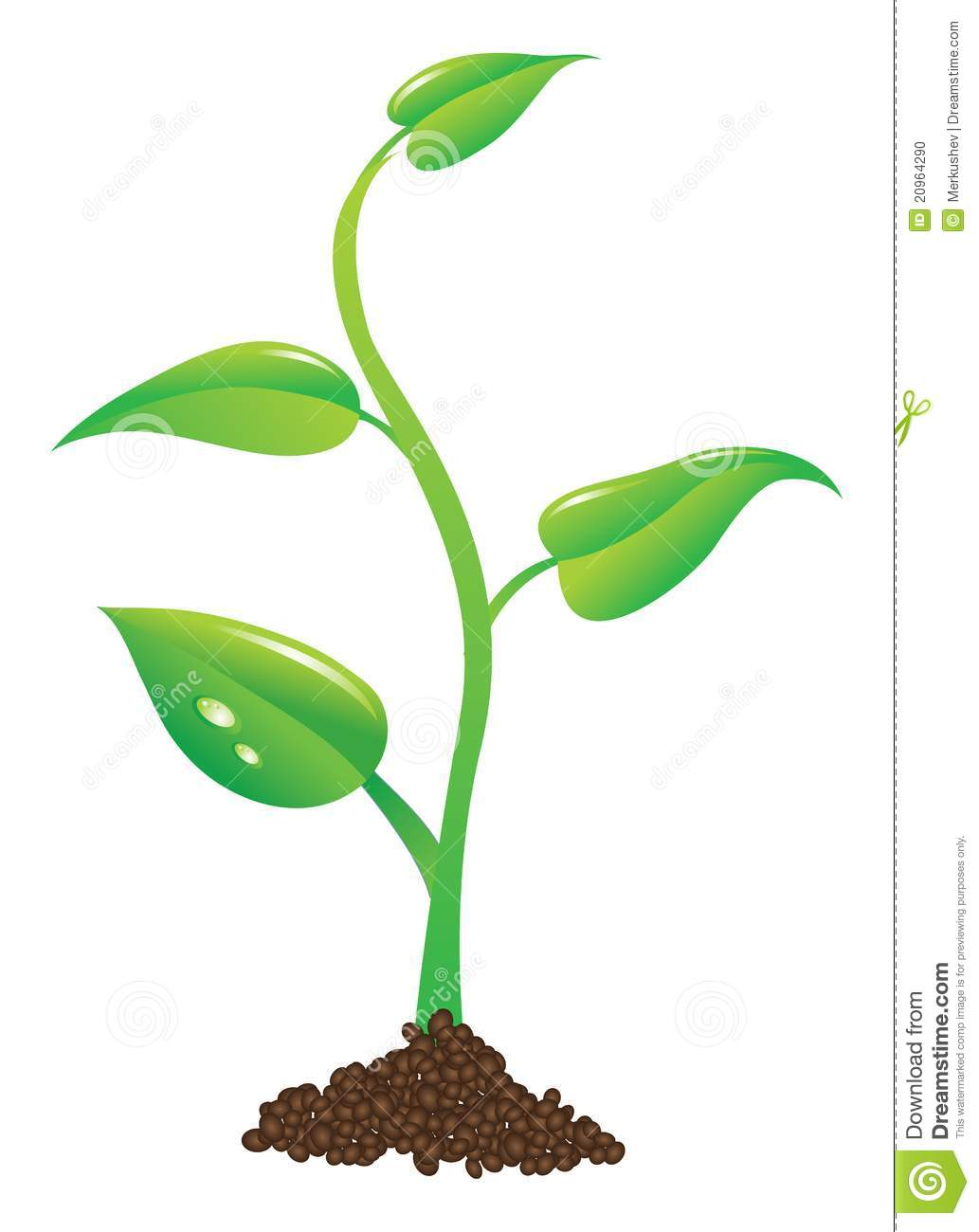 clipart of plants - photo #32