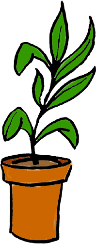 Potted Vegetable Plant Clipart | Clipart Panda - Free Clipart Images: www.clipartpanda.com/categories/potted-vegetable-plant-clipart