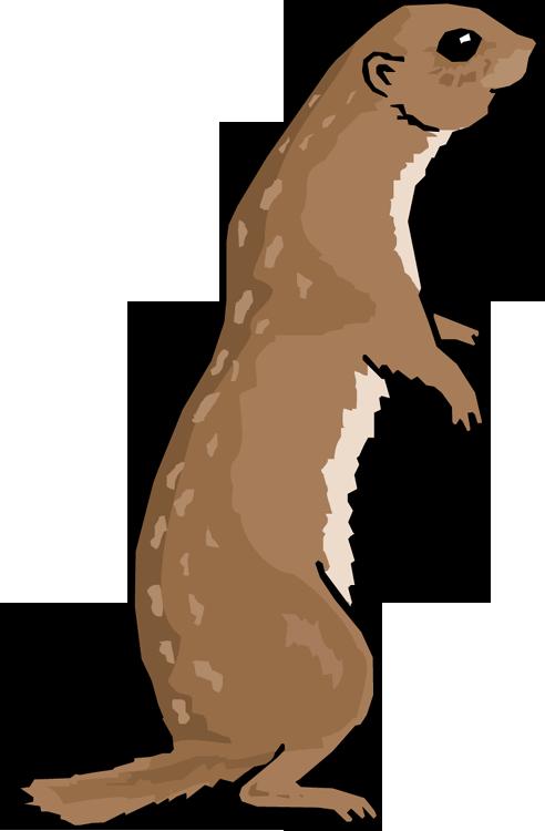 Prairie Dog Clip Art