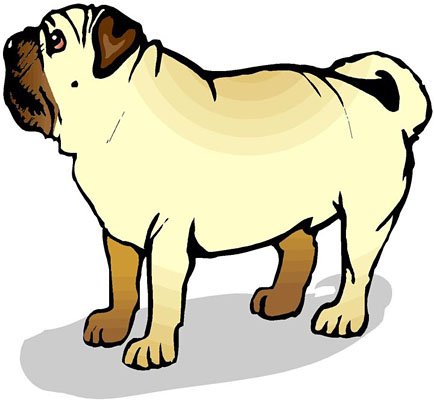 Pug Dog Pictures Cartoons