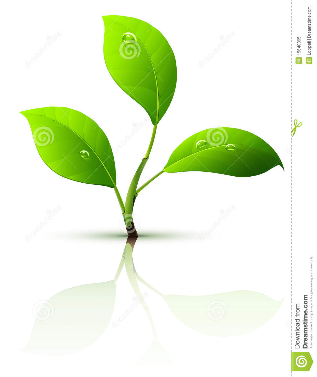 The gallery for --> Seed Sprouting Clipart