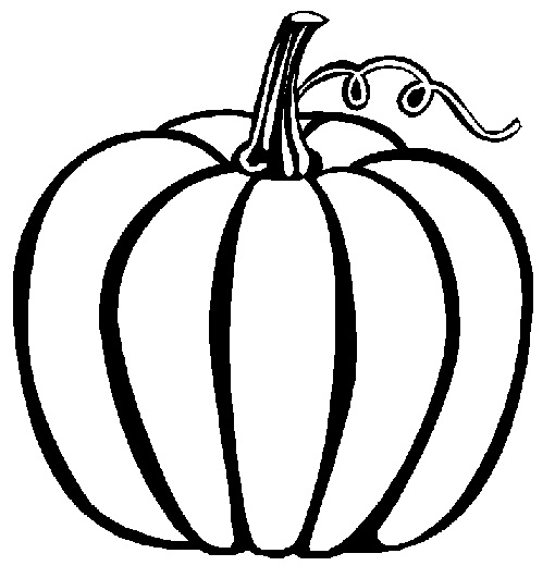 Line Drawing Vines : Pumpkin vine drawing clipart panda free images