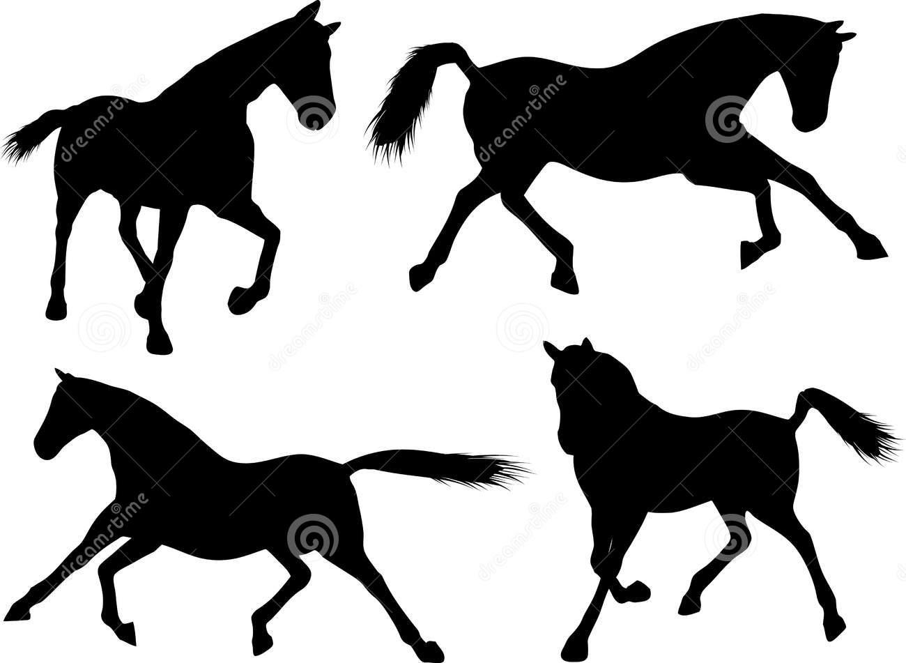 Quarter Horse H...