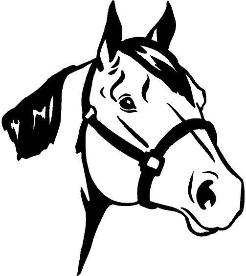 Horse Head Decal 50452642