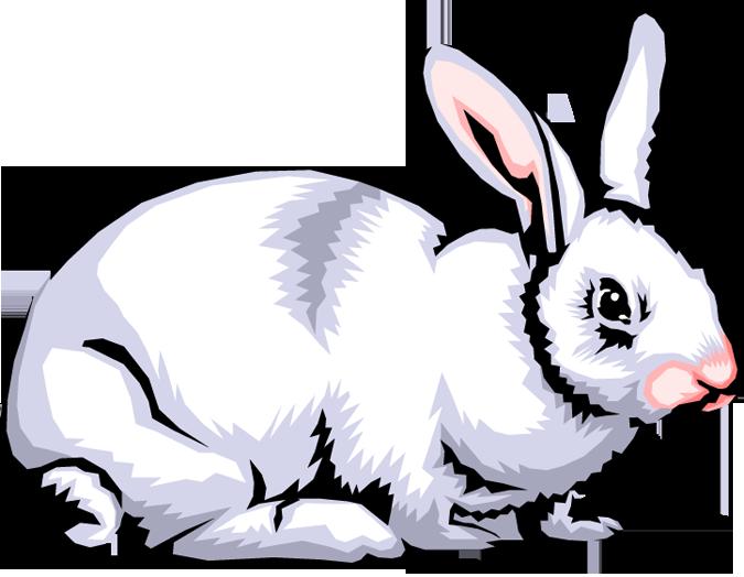 rabbit clip art images clipart panda free clipart images rh clipartpanda com free rabbit clipart images free clipart rabbit ears