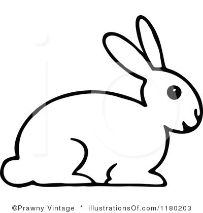 Rabbit Black And White Drawing