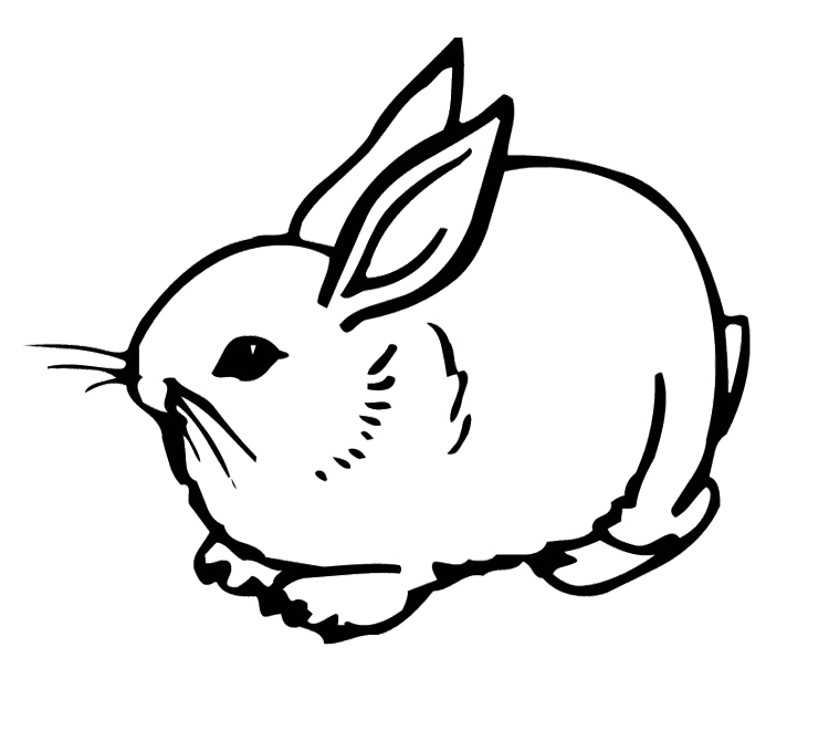 Rabbit Coloring Page | Clipart Panda - Free Clipart Images
