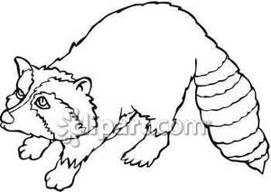 Raccoon Clip Art  Raccoon Clipart Black And White