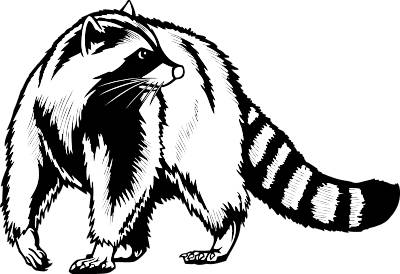 Add to Studio | Clipart Panda - Free Clipart Images Raccoon Face Clip Art Black And White