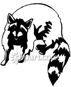 raccoon-clipart-black-and-white-Black_and_White_Simple_Raccoon_Royalty ... Raccoon Face Clip Art Black And White