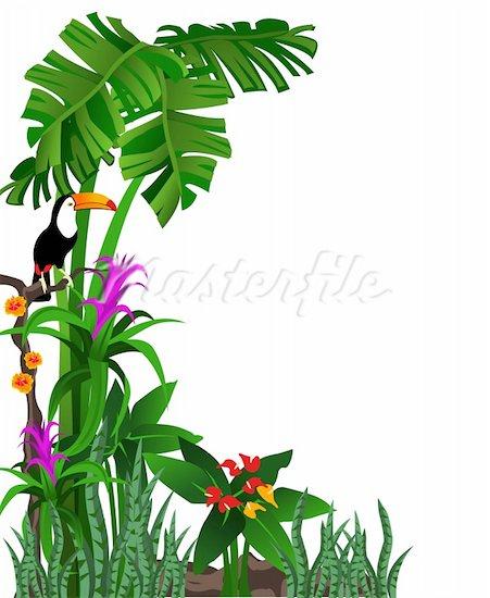 free jungle border clipart - photo #43