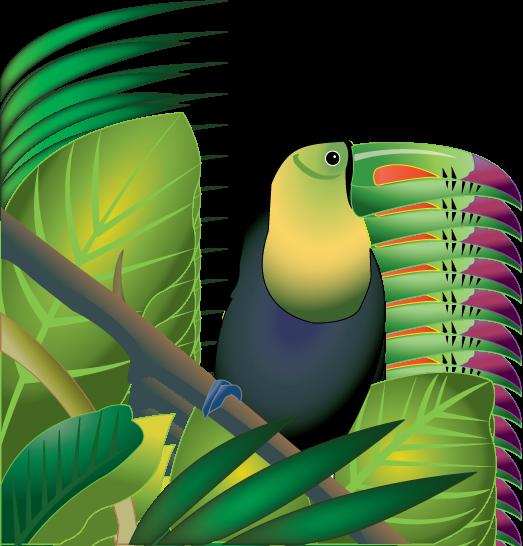Rainforest Trees Clipart | Clipart Panda - Free Clipart Images