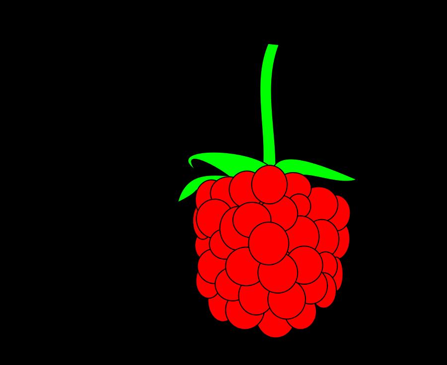raspberry 20clipart clipart panda free clipart images rh clipartpanda com strawberry clip art strawberry clip art download