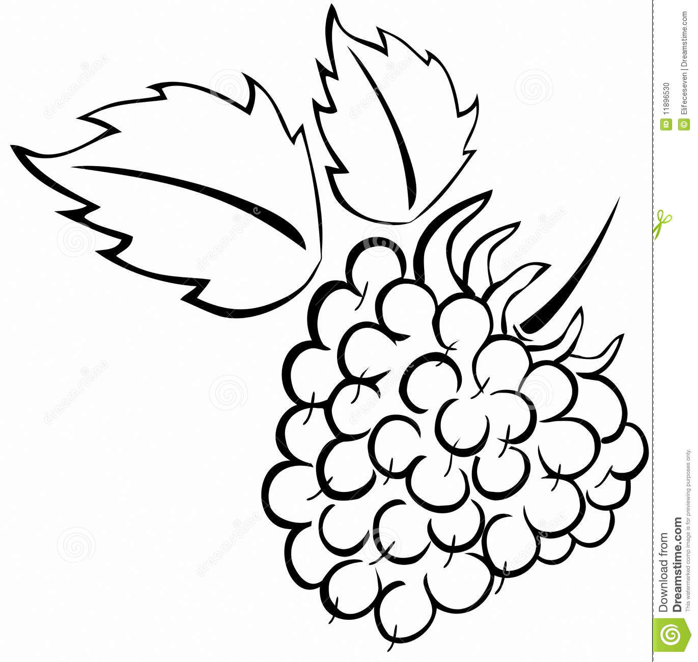 Raspberry 20clipart | Clipart Panda - Free Clipart Images