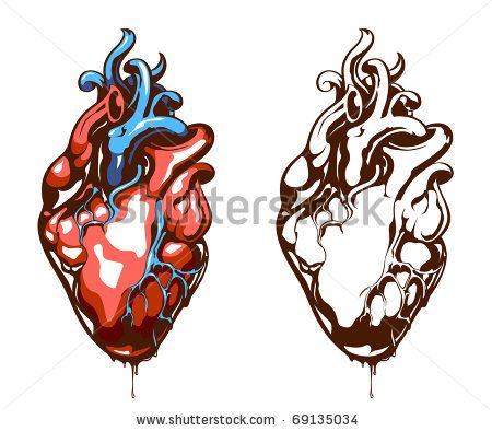 real heart drawing | clipart panda - free clipart images, Muscles