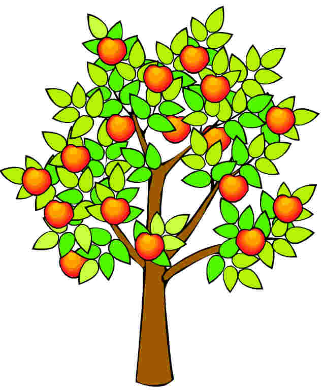 Realistic Apple Tree Drawing | Clipart Panda - Free ...