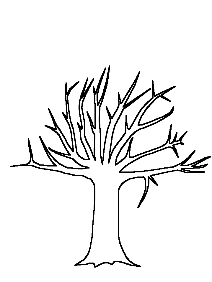 realistic%20apple%20tree%20drawing