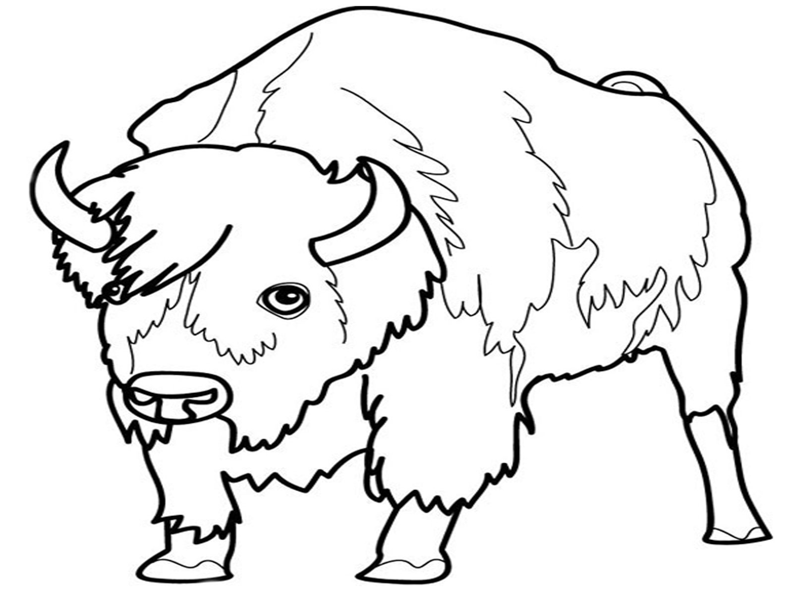 wild animals coloring pages print and color news bubblews dot - Animal Coloring Pages Children