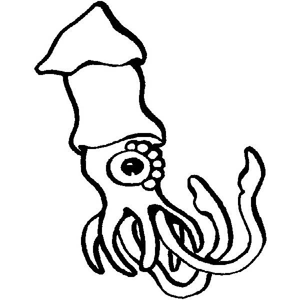 Coloring pages trend january clipart panda free for Realistic octopus coloring page