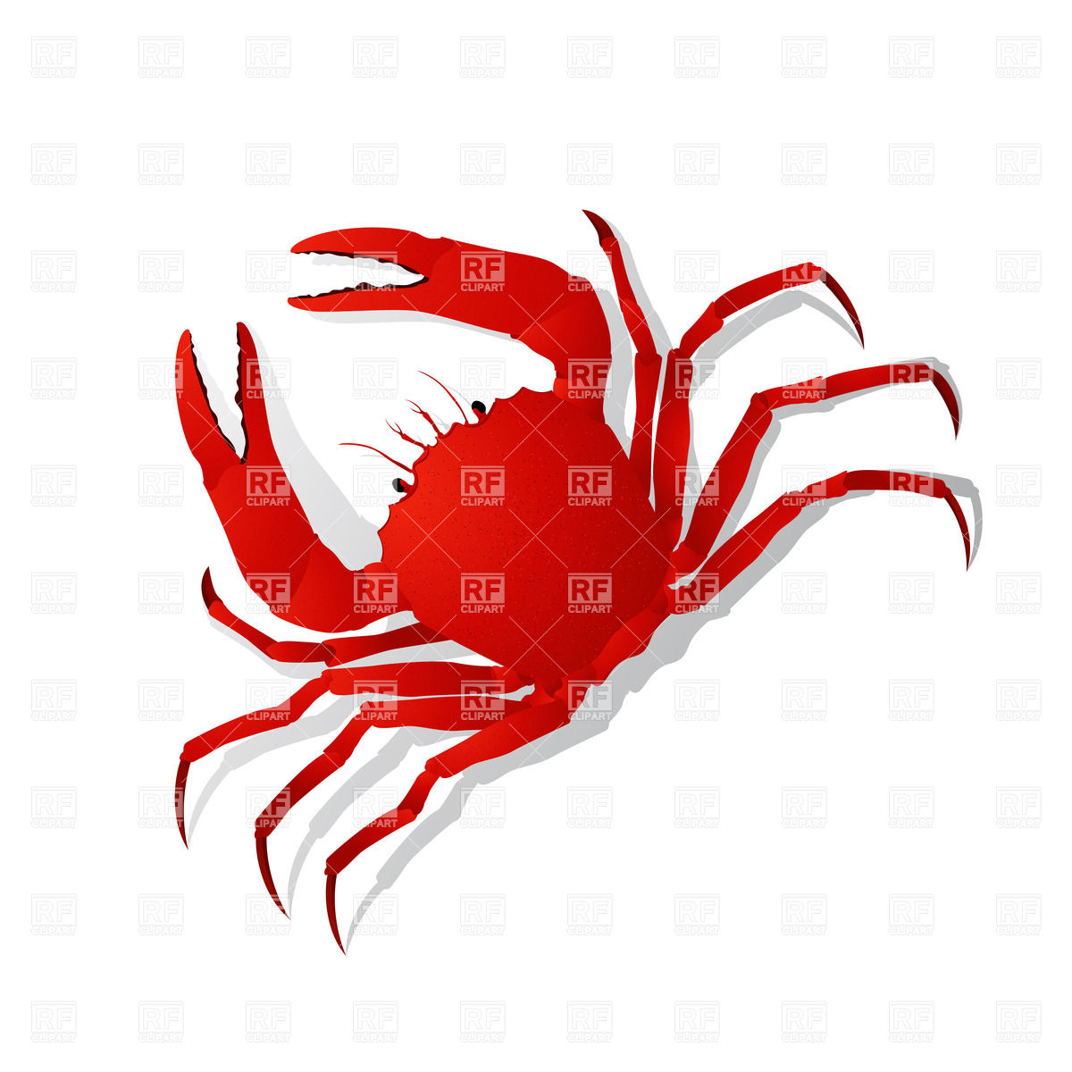 red%20crab%20clipart