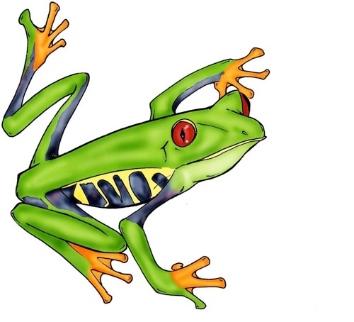 red eyed tree frog clipart clipart panda free clipart images. Black Bedroom Furniture Sets. Home Design Ideas