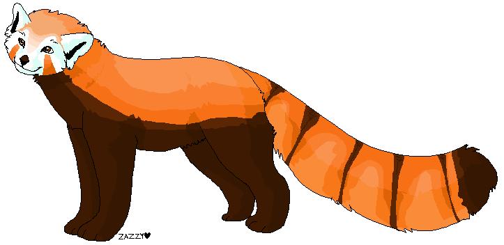 Red Panda Clip Art