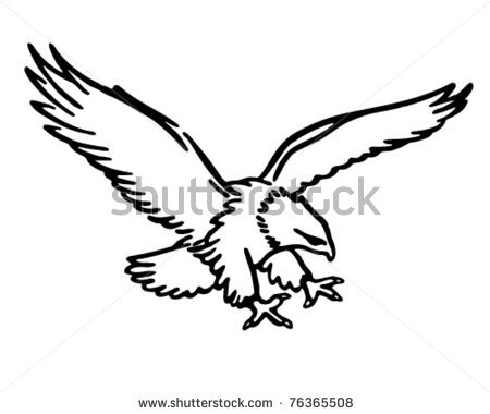 Red Tailed Hawk Clipart | Clipart Panda - Free Clipart Images