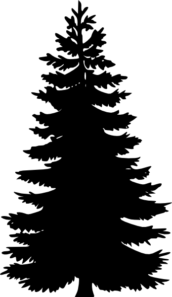 redwood%20clipart