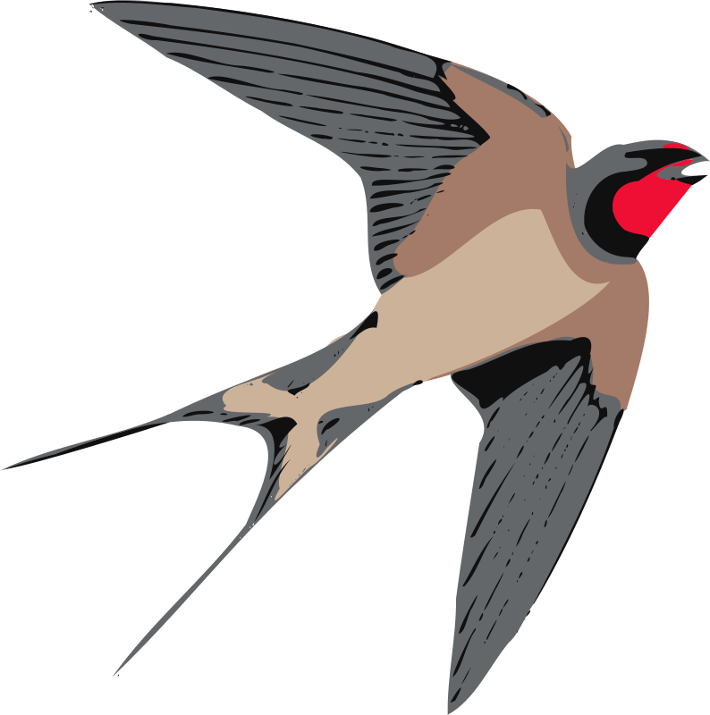 Swallow Clipart | Clipart Panda - Free Clipart Images: www.clipartpanda.com/categories/swallow-clipart