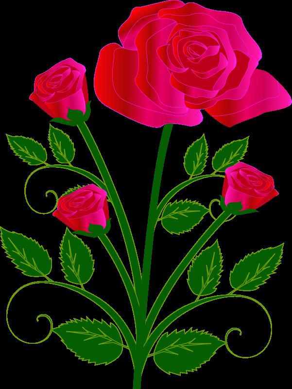-valentine-free-clip-art-hd-free-to-use-public-domain-rose-clip-art ...