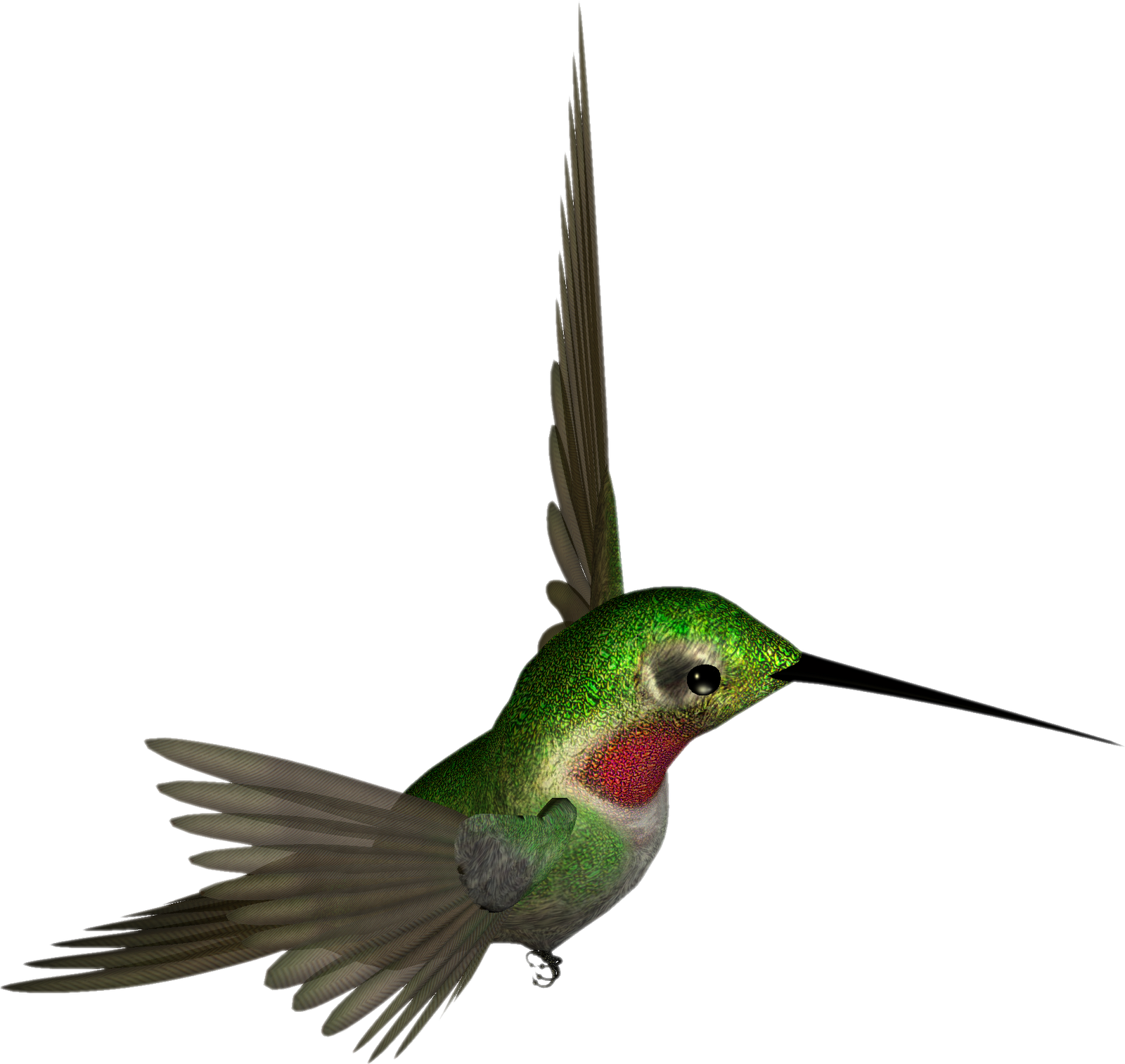 free png Hummingbird Clipart images transparent